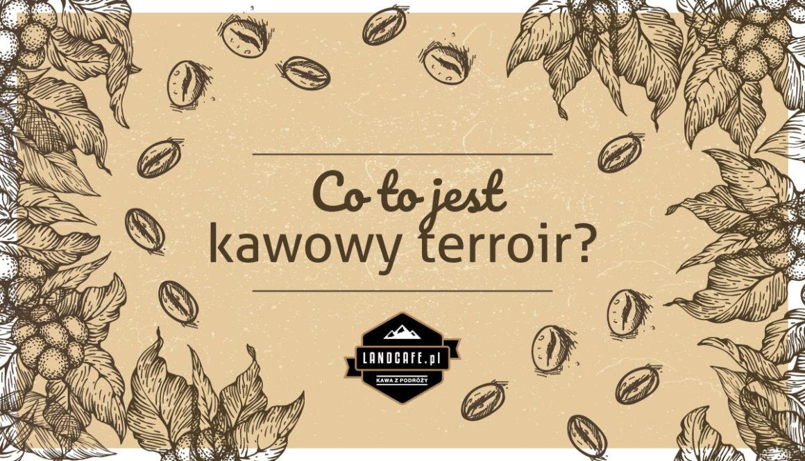 Kawowy Terroir