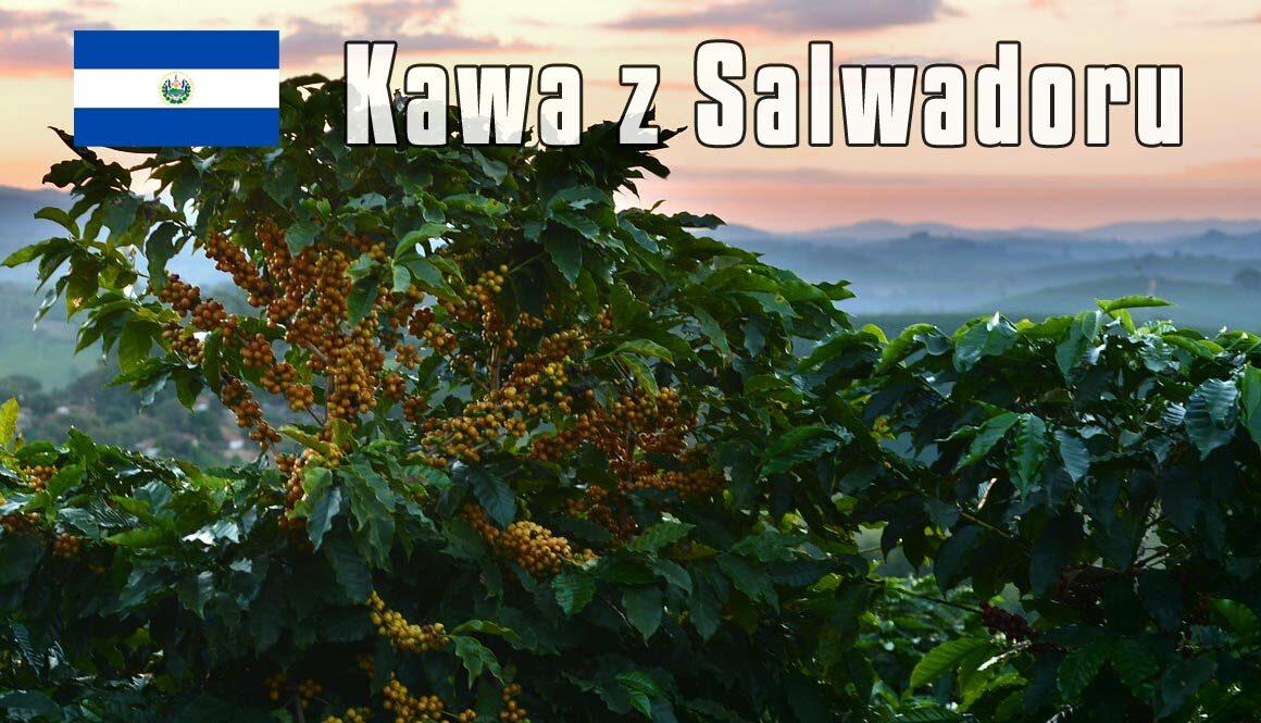 kawa z Salvadoru