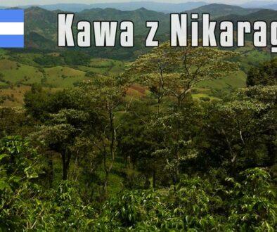 plantacja-kawy-nikaragua