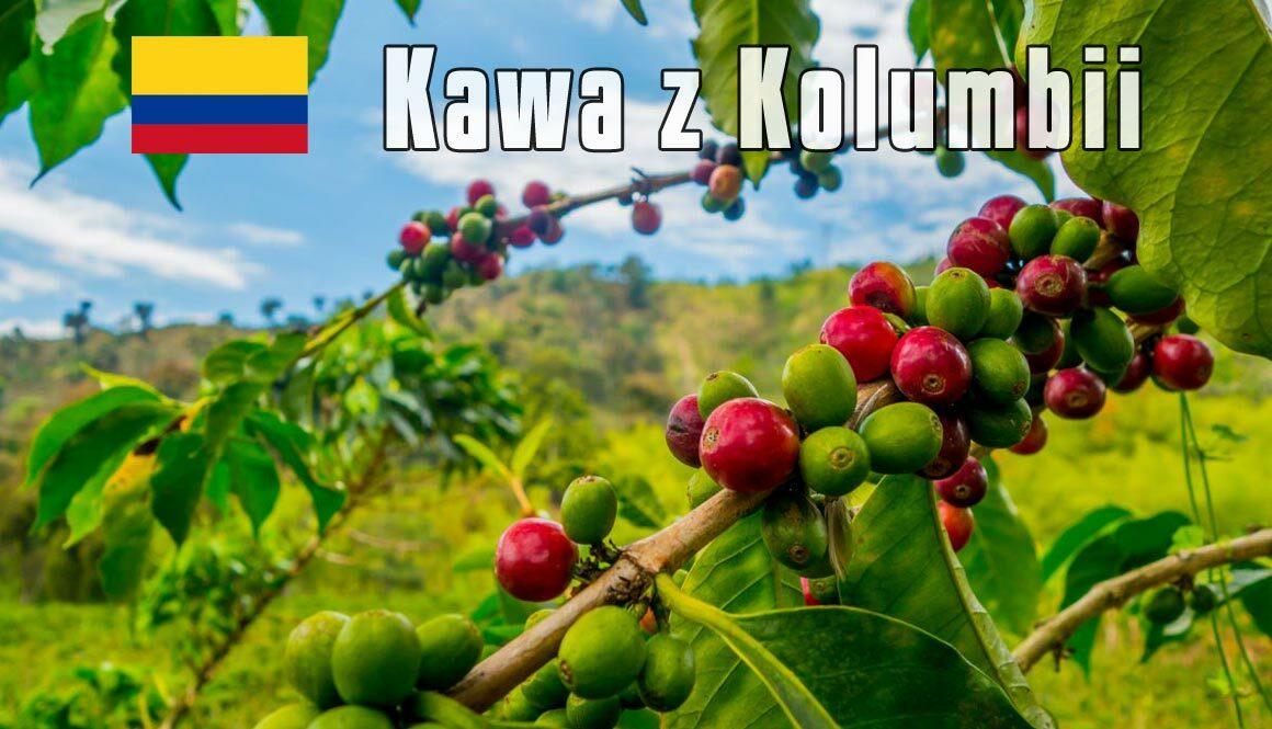 plantacja-kawy-Kolumbia